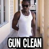 GUN CLEAN